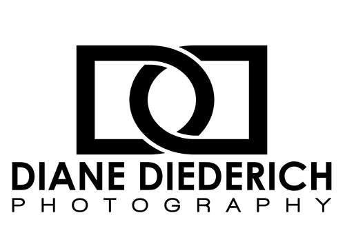 Diane Diederich - Website
